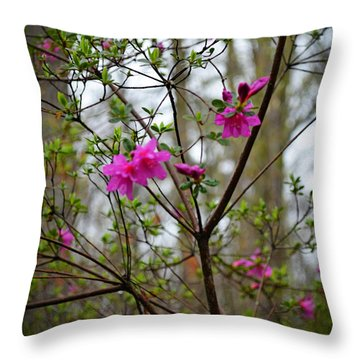 Lovely Bright Pink Flowers Throw Pillow