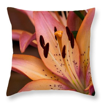 Lovely Colors Throw Pillow