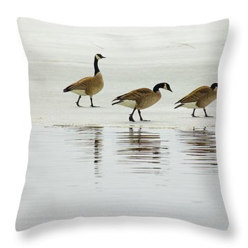 Lovely Day For A Stroll Throw Pillow