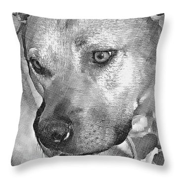Throw Pillow featuring the drawing Lovely Dog by Lucia Sirna