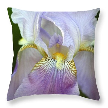 Throw Pillow featuring the photograph Lovely In Lavender by Sheila Brown