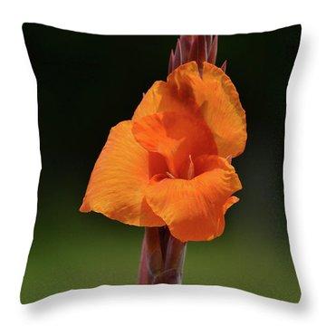 Lovely Iris Flower Throw Pillow