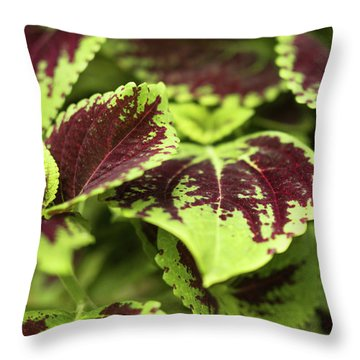 Lovely Leaves Throw Pillow