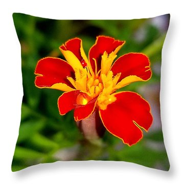 Lovely Little Flower Throw Pillow