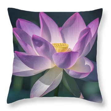 Throw Pillow featuring the photograph Lovely Lotus by Cindy Lark Hartman