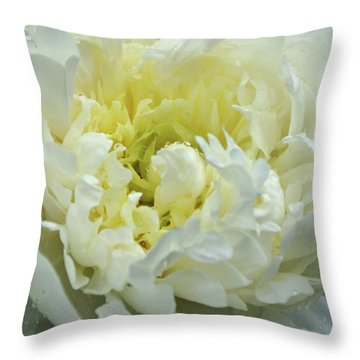 Throw Pillow featuring the photograph Lovely Peony by Sandy Keeton