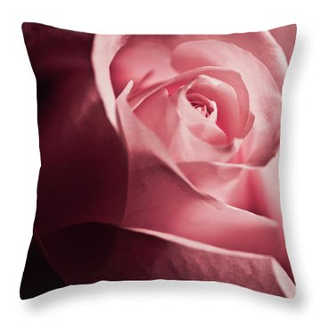 Throw Pillow featuring the photograph Lovely Pink Rose by Micah May