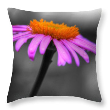 Throw Pillow featuring the photograph Lovely Purple And Orange Coneflower Echinacea by Shelley Neff