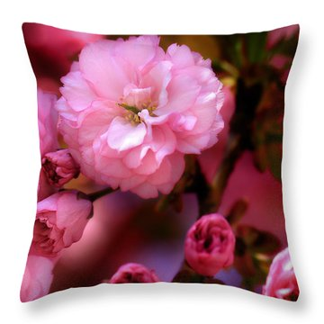 Lovely Spring Pink Cherry Blossoms Throw Pillow