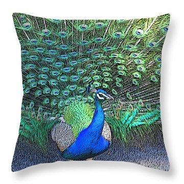 Lovely To Look At  Throw Pillow