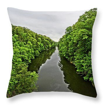 Lover's Leap Throw Pillow