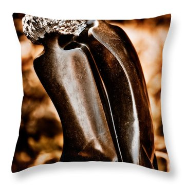 Lovers Throw Pillow by Venetta Archer