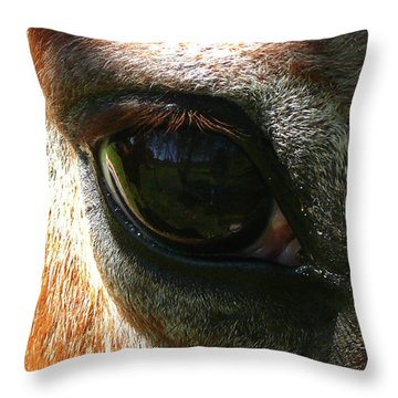 Loving Eye Throw Pillow