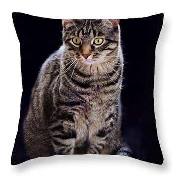 Loving Joseph Throw Pillow by Kathy M Krause