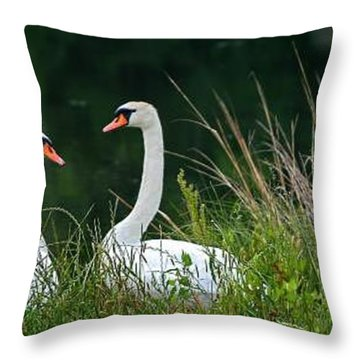 Loving Swans Throw Pillow by Clayton Bruster