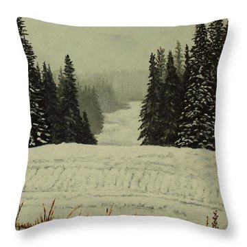 Low Ceiling Throw Pillow