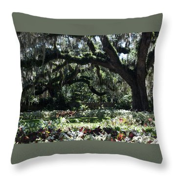 Throw Pillow featuring the photograph Low Country Series I by Suzanne Gaff