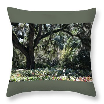Throw Pillow featuring the photograph Low Country Series II by Suzanne Gaff