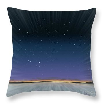 Low Flying Throw Pillow