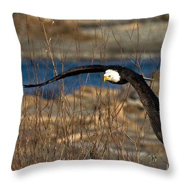 Low Glider Throw Pillow