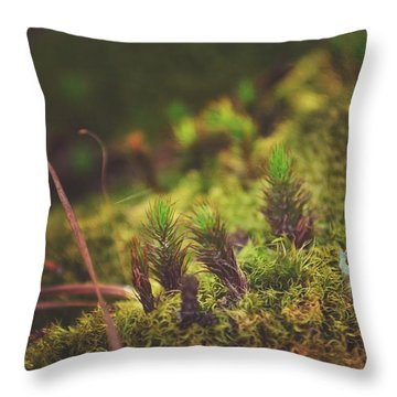 low in the valley -Loganville Georgia  Throw Pillow