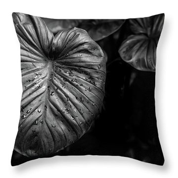 Low Key Nature Background, Textured Plants, Leaves For Decorativ Throw Pillow