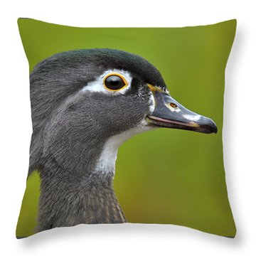 Throw Pillow featuring the photograph Low Key by Tony Beck