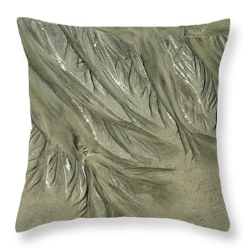 Low Tide Abstracts Iv Throw Pillow