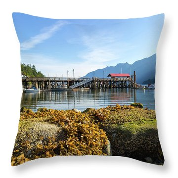 Low Tide At Horseshoe Bay Canada On A Sunny Day Throw Pillow by David Gn