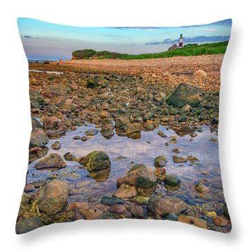 Low Tide At Montauk Point Throw Pillow by Rick Berk