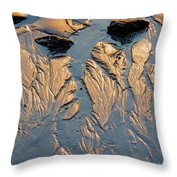 Low Tide Flow, Kettle Cove, Cape Elizabeth, Maine  -66557 Throw Pillow