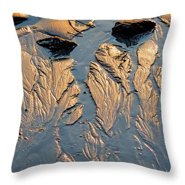 Throw Pillow featuring the photograph Low Tide Flow, Kettle Cove, Cape Elizabeth, Maine  -66557 by John Bald