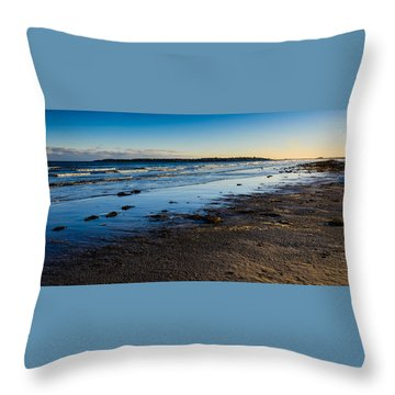Low Tide In Winter Throw Pillow