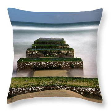 Low Tide Reveal Throw Pillow