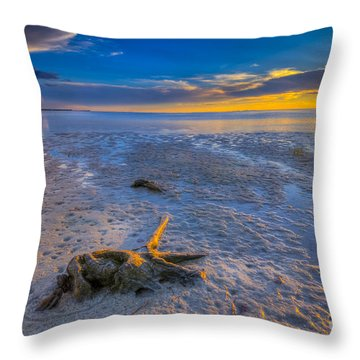 Low Tide Stump Throw Pillow