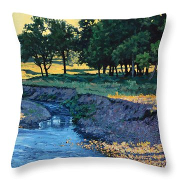 Low Water Morning Throw Pillow