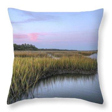 Marsh Grass Throw Pillows