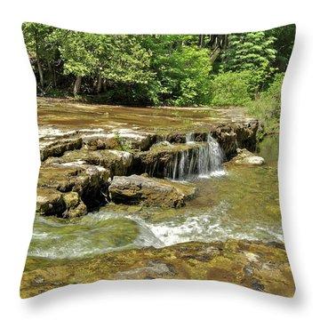 Lower Au Train Falls 2 Throw Pillow by Michael Peychich