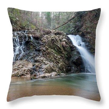 Lower Brasstown Falls Throw Pillow
