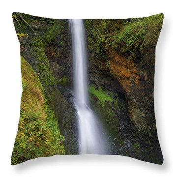Lower Butte Creek Falls In Fall Season Throw Pillow by David Gn