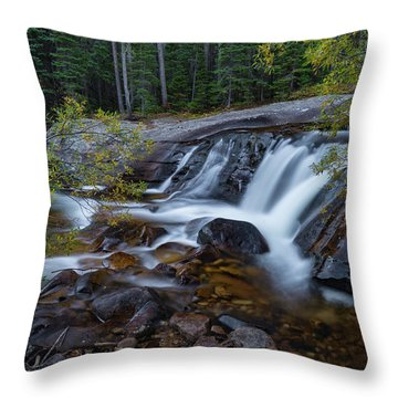 Lower Copeland Falls Throw Pillow by Gary Lengyel