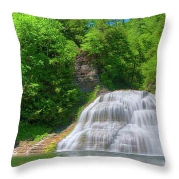 Throw Pillow featuring the photograph Lower Falls 0485 by Guy Whiteley