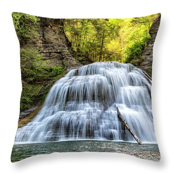 Lower Falls At Treman State Park Throw Pillow