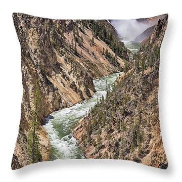 Lower Falls Throw Pillow