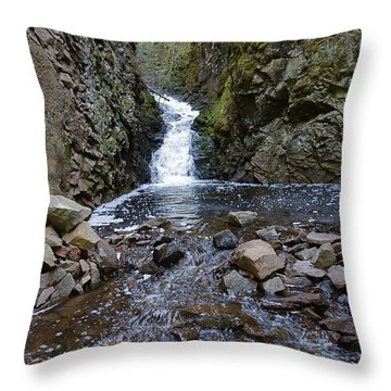 Throw Pillow featuring the photograph Lower Falls On Kugler's Creek #2 by Sandra Updyke