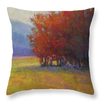 Lower Farm Field Throw Pillow by Susan Williamson