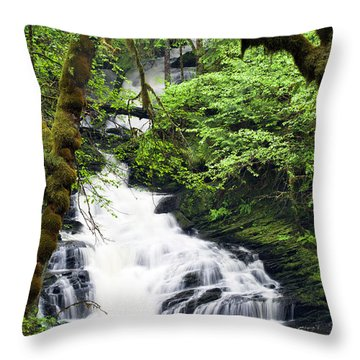 Lower Lunch Creek Falls Throw Pillow
