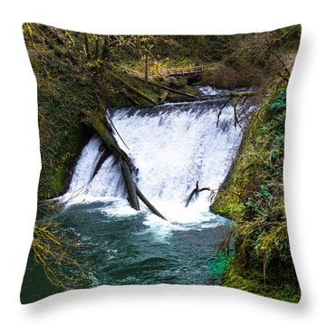 Lower North Falls Throw Pillow
