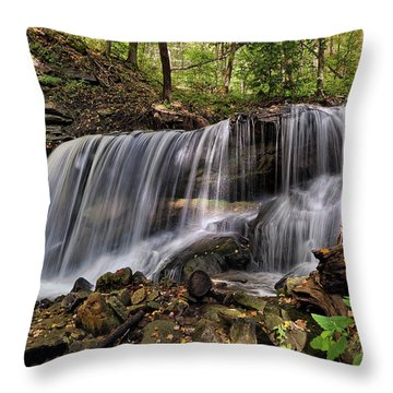 Lower Tews Falls Throw Pillow