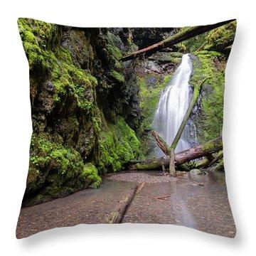 Lower Trestle Creek Falls Throw Pillow